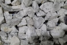 Rough - Howlite 250gms
